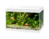 Aquarium aqua 20 led Wit