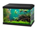 aquarium aqua 20 classic