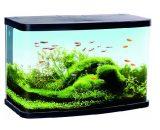 Aquarium Panorama LED VS60