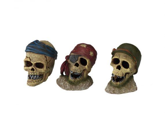 Piraten schedel ooglap