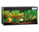 Juwel Aquarium Rio 240 Led 121x41x55 cm zwart