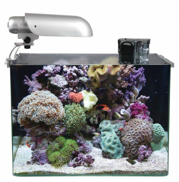 Cocoon aquarium nr 7 leeg 45x30x32CM