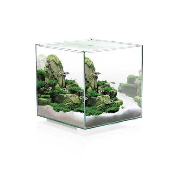 Ciano Aquarium nexus pure