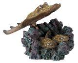 Aquarium pijlstaartrog met luchtuitstromer