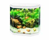 aquarium aqua 30 led Wit 40x20x45,5CM