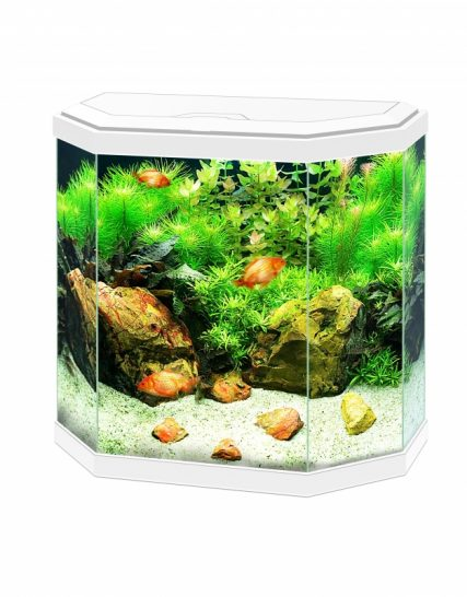 aquarium aqua 30 led Wit 40x20x45,5CM