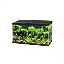 Aquarium 60 led cf80 Zwart 60x30x41cm