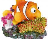 Anemoonvis en koraal met luchtuitstromer