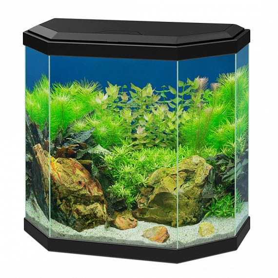 Aquarium aqua 30 led zwart